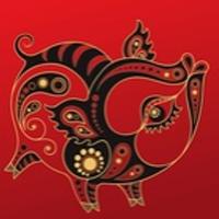 Photo of Signo chino del cerdo