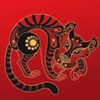 Photo of Signo chino de tigre