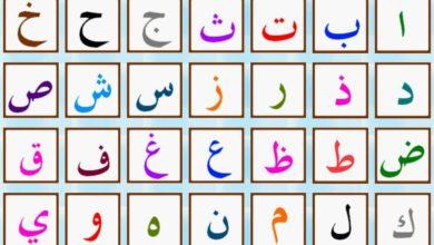 Photo of Clarividencia árabe